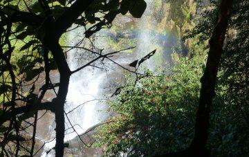 nepal-lobuche-east-und-island-peak-oktober-2016-18